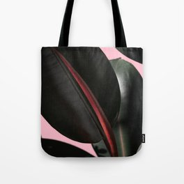 Ficus Elastica with beige Tote Bag