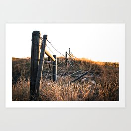 Fence in Color Art Print