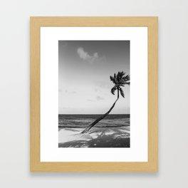 San Pedro Palm B&W Framed Art Print