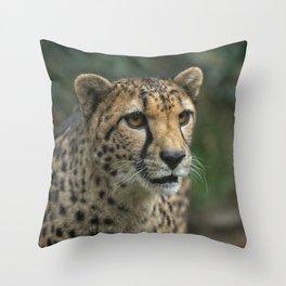 Cheetah's Face Throw Pillow