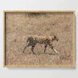 Serval Cat Serving Tray