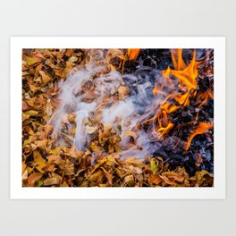 Burning Leaves Art Print