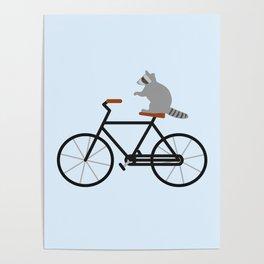 Raccoon Riding Bike Poster