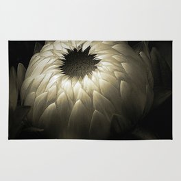 Flower Bud In Black And White Rug