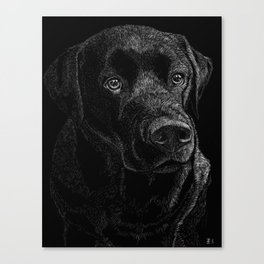 Chocolate Lab Canvas Print