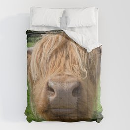 Highland cow nose Comforters