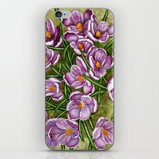 Springs First Kiss iPhone & iPod Skin