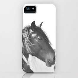 Stallion in black and white iPhone Case