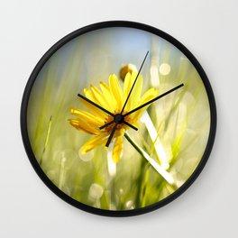 Hello Daisy Wall Clock