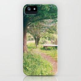 Ruins In Ireland iPhone Case