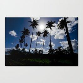 Afternoon Sun Canvas Print