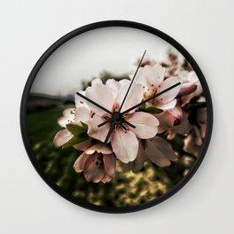 Flor de Almendro Wall Clock
