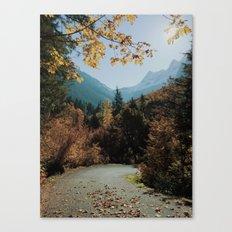 Washington Fall Rd Canvas Print