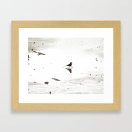 Crow doing a dance in a puddle Framed Art Print