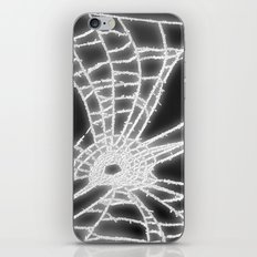 Surrealistic Spider Web iPhone & iPod Skin