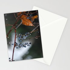 Grapes in a Morning Rain Stationery Cards
