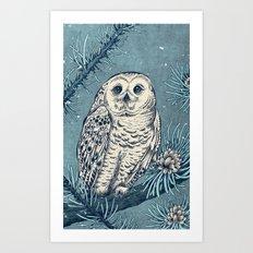 Winter Snowy Owl Art Print