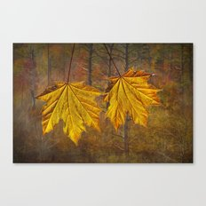 Two Yellow Leaves  Canvas Print
