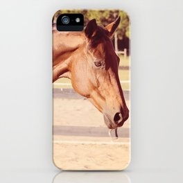 Glorious Autumn iPhone Case