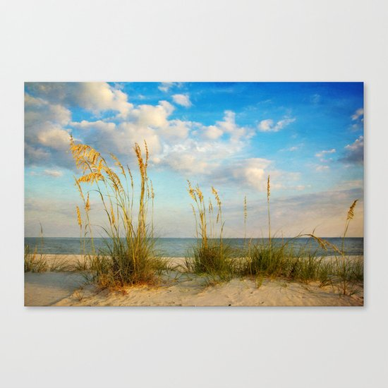 Sea Oats along the Beach Canvas Print