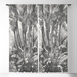 Palms in Water Blackout Curtain