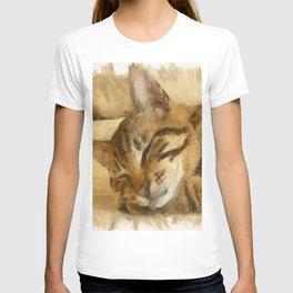 Let Sleeping Cats Lie T-shirt