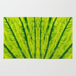 Biomimicry - Biomaterials - Symmetry Rug