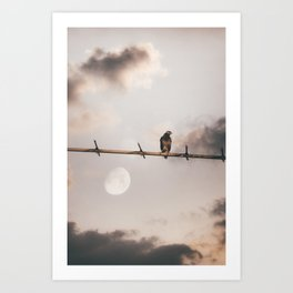 Time Alone by Omerika Art Print