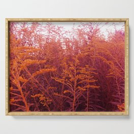 Red Goldenrod Serving Tray