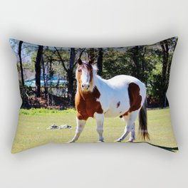 White And Brown Horse Rectangular Pillow