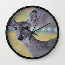 Eyes as big as saucers & as black as coal! Wall Clock