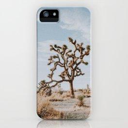 Joshua Tree II iPhone Case