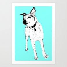 Jack Russell Terrior Art Print
