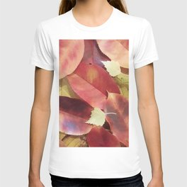 Autumn Leaves - Seasonal Photography by Fluid Nature T-shirt
