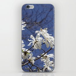 Star filled sky (Star Magnolia flowers!)      Edit iPhone Skin