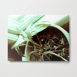 HIS GRACE SUSTAINS ME IN THE DRY PLACES Metal Print