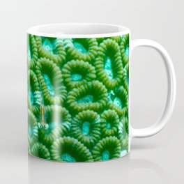 Upon the green circles of sponges rests a little fish Coffee Mug