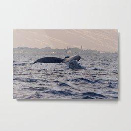 Whale Fluke 2 - Photoart Metal Print