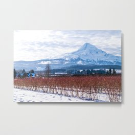 Winter Snow, Mt Hood and Blueberry Bushes Metal Print