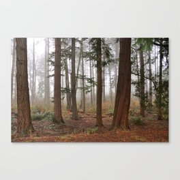 City Forest Canvas Print