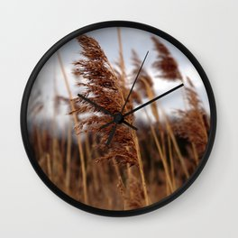 stay in the wind. Wall Clock