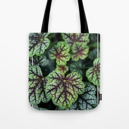 Heuchera Americana Tote Bag
