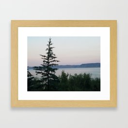 The Tree by the Lake Framed Art Print