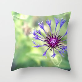 Searching For Sanity Throw Pillow