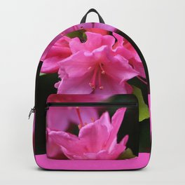 Pink Azelaea Spring Flowers Pretty Flowers Blossoms Nature Flora Backpack
