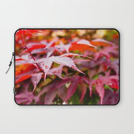Red Maple Laptop Sleeve