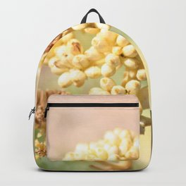 sand succulent flower in autumn Backpack