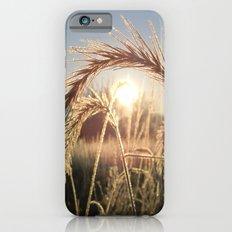 Wheat Sunrise Slim Case iPhone 6s