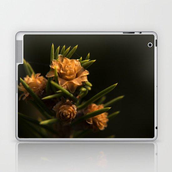 Spring cone Laptop & iPad Skin