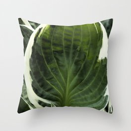 Hosta Leaf With Water Drop Throw Pillow